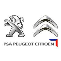Peugeot i Citroen autodijagnostika