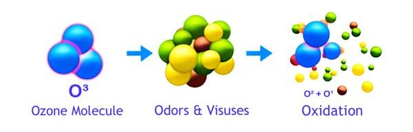 ozon uništava viruse i bakterije